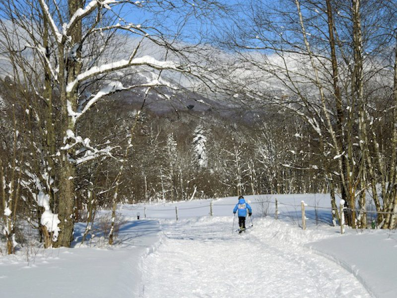 Cross-country Skiing with Kids in Stowe