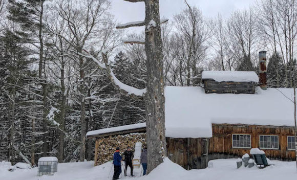 Trapp Family Lodge Sugar House_Tour