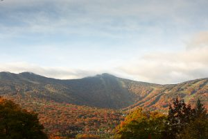 Killington foliage