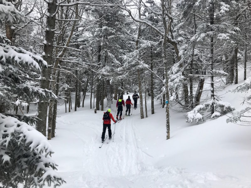 Into the Woods – Exploring the Bolton Valley Backcountry