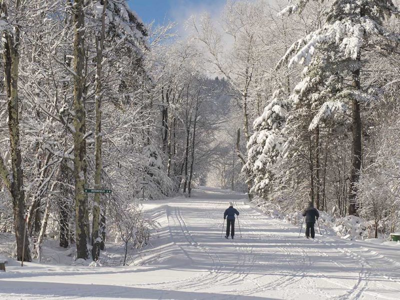 How to Start Cross Country Skiing This Season